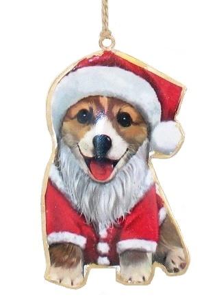 Corgi in Santa Suit